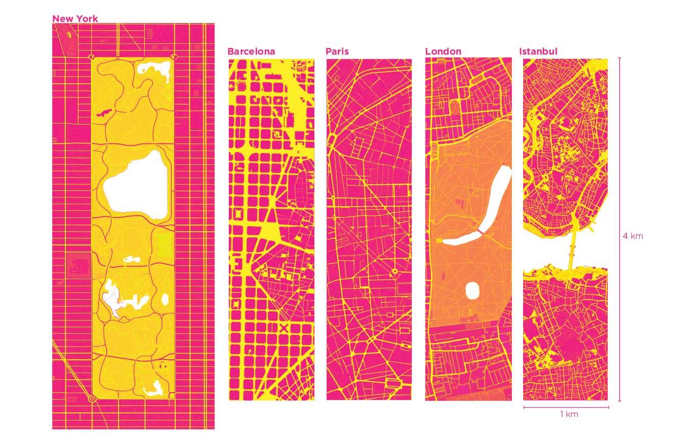 cities }