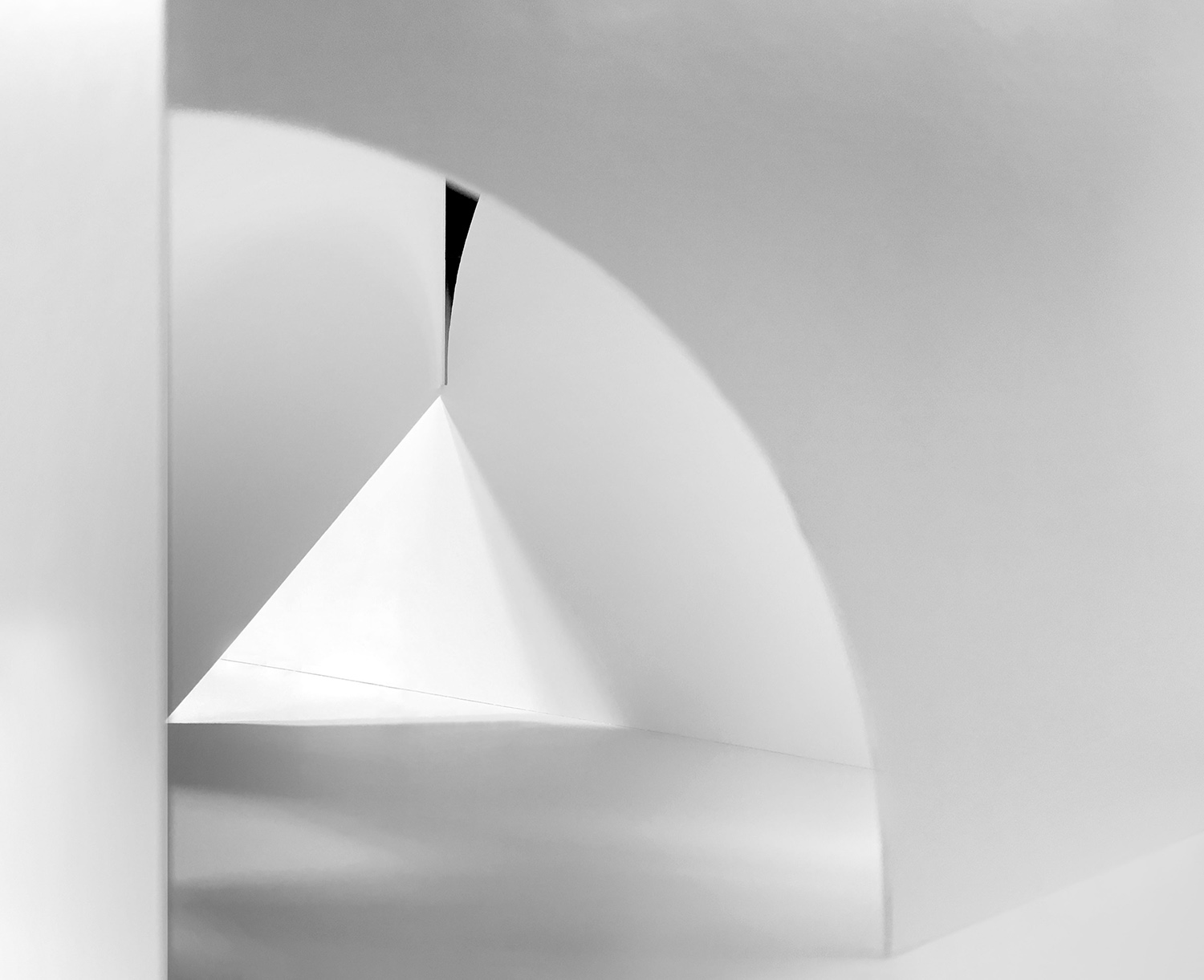 Simple forms  inspired each vignette MAIO