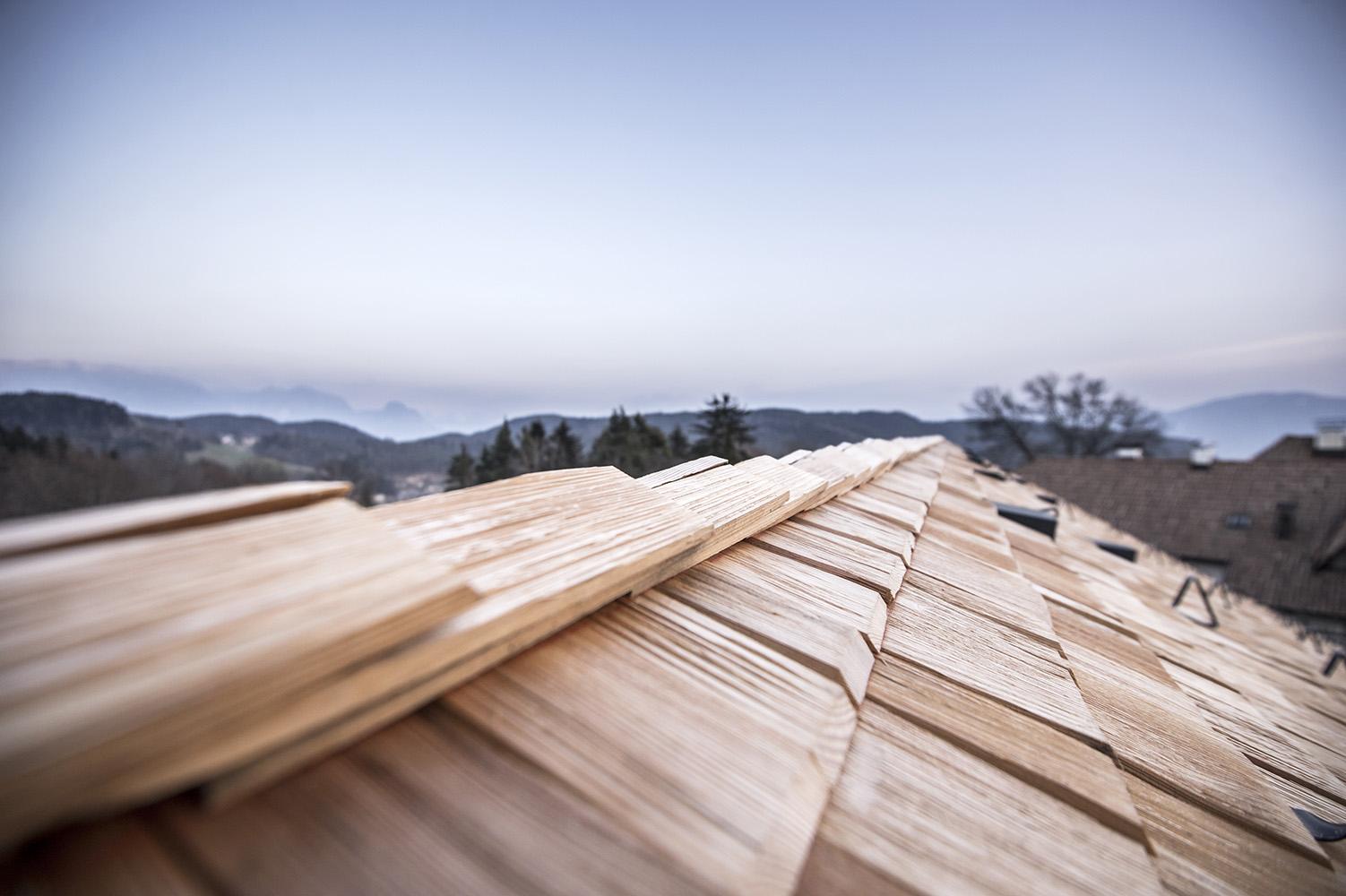 shingle roof & panorama