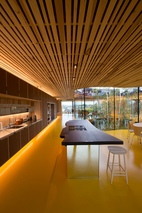 A single slice of American Black Walnut forms the kitchen island surface. Alex de Rijke