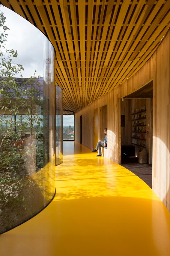 The central tree and natural sunlight greets you on entering. Alex de Rijke