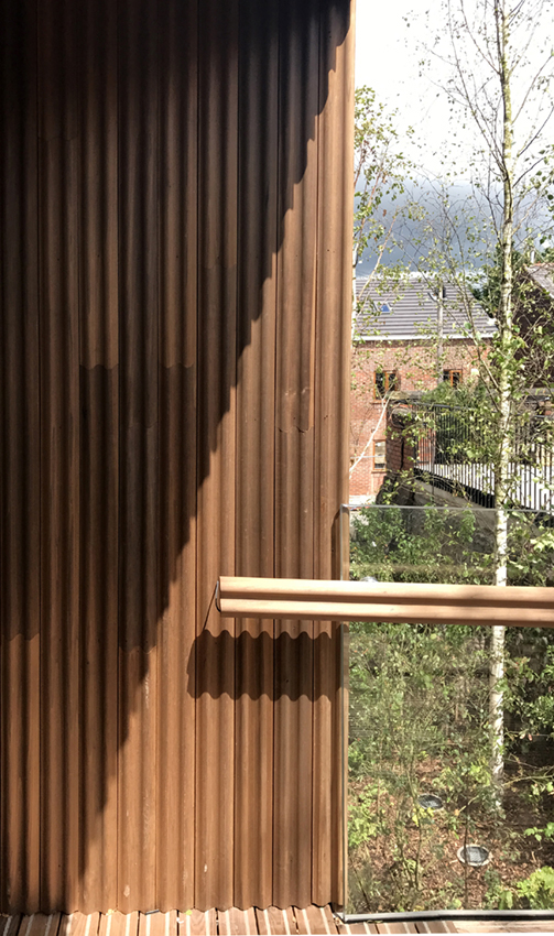 The corrugated tulipwood cladding, a surreal curtain of wood, casts interesting shadows. Alex de Rijke
