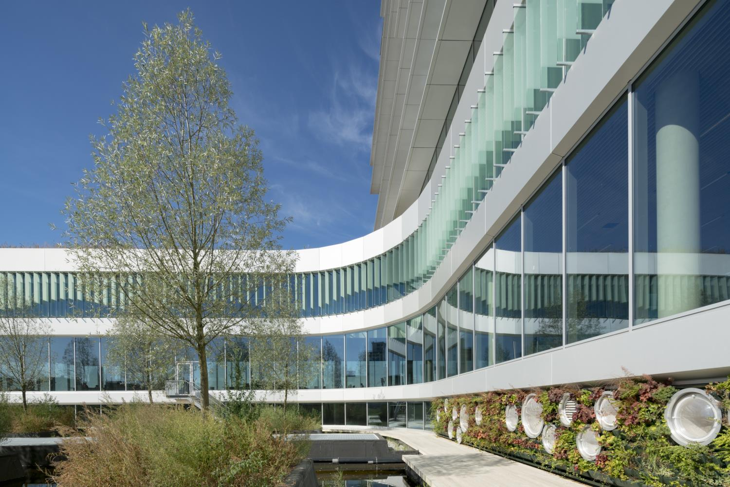 The constructed wetland filters rainwater and water from sinks for use in the green façade and flushing toilets