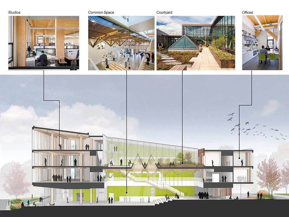 Sectional perspective showing prevalence of  wood throughout the building Leers Weinzapfel Associates