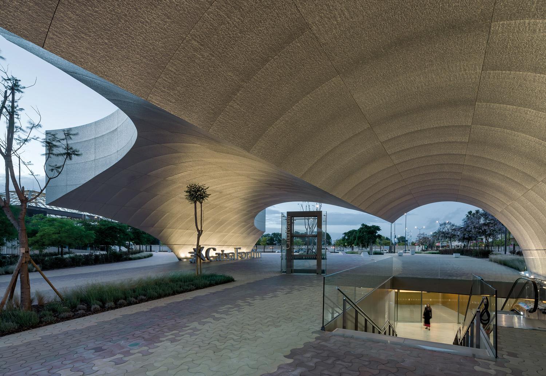Acces under the canopy Duccio Malagamba