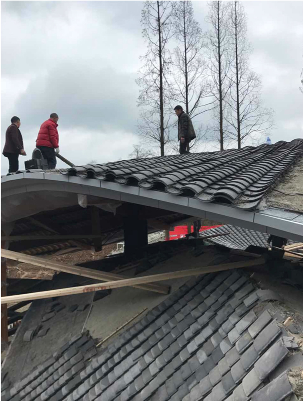 Roof Paving 03 Bian Lin
