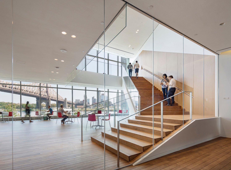 The building frames expansive views of the Queensboro Bridge, Tata Innovation Center, WEISS/MANFREDI Albert Večerka/Esto