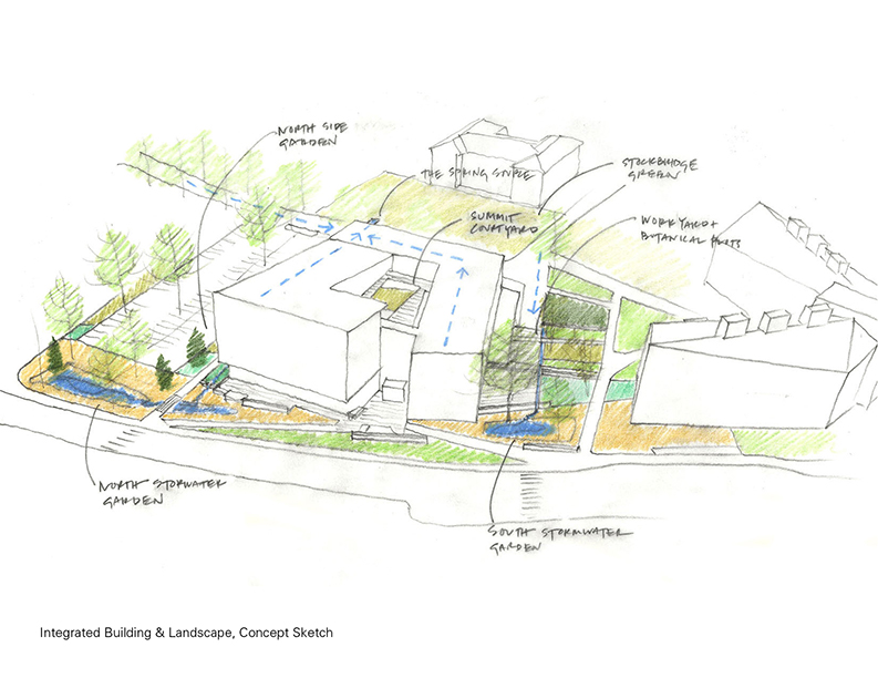 Landscape Concept Sketch }