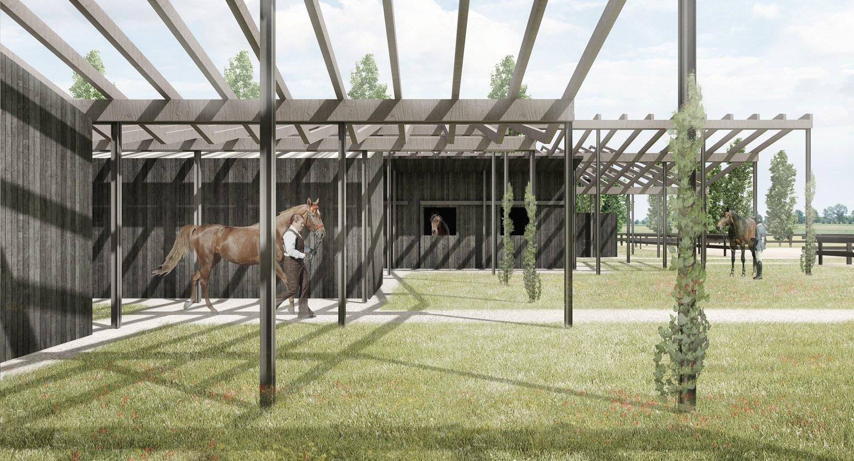 Vista dell'area box cavalli