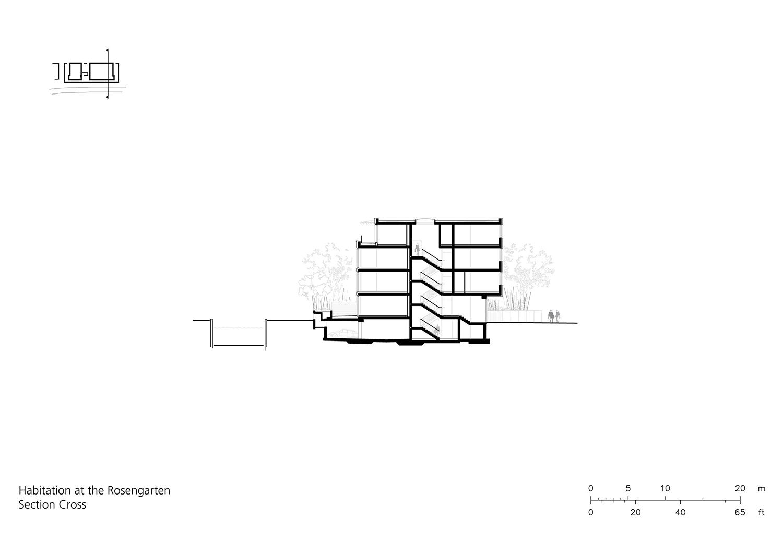 Section cross }