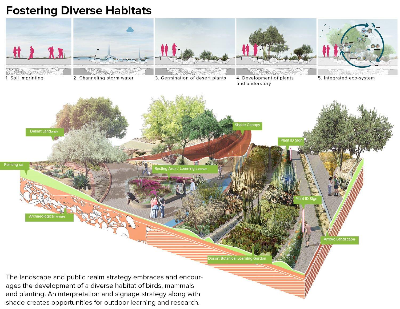 Fostering Diverse Habitats Sasaki}