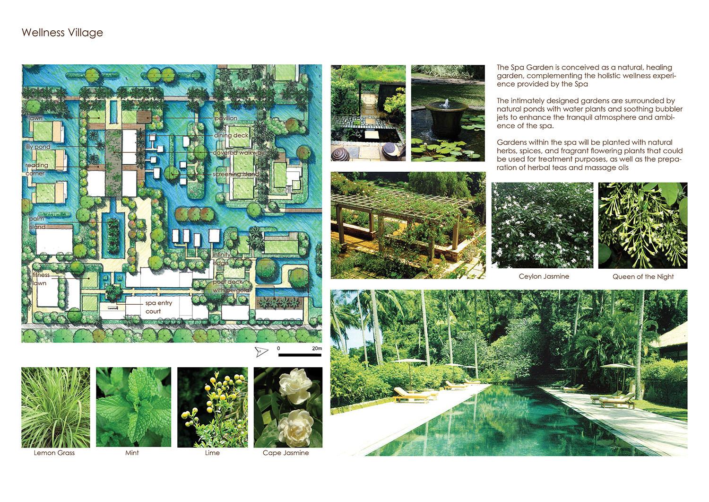 Wellness Village_Landscape Strategy }
