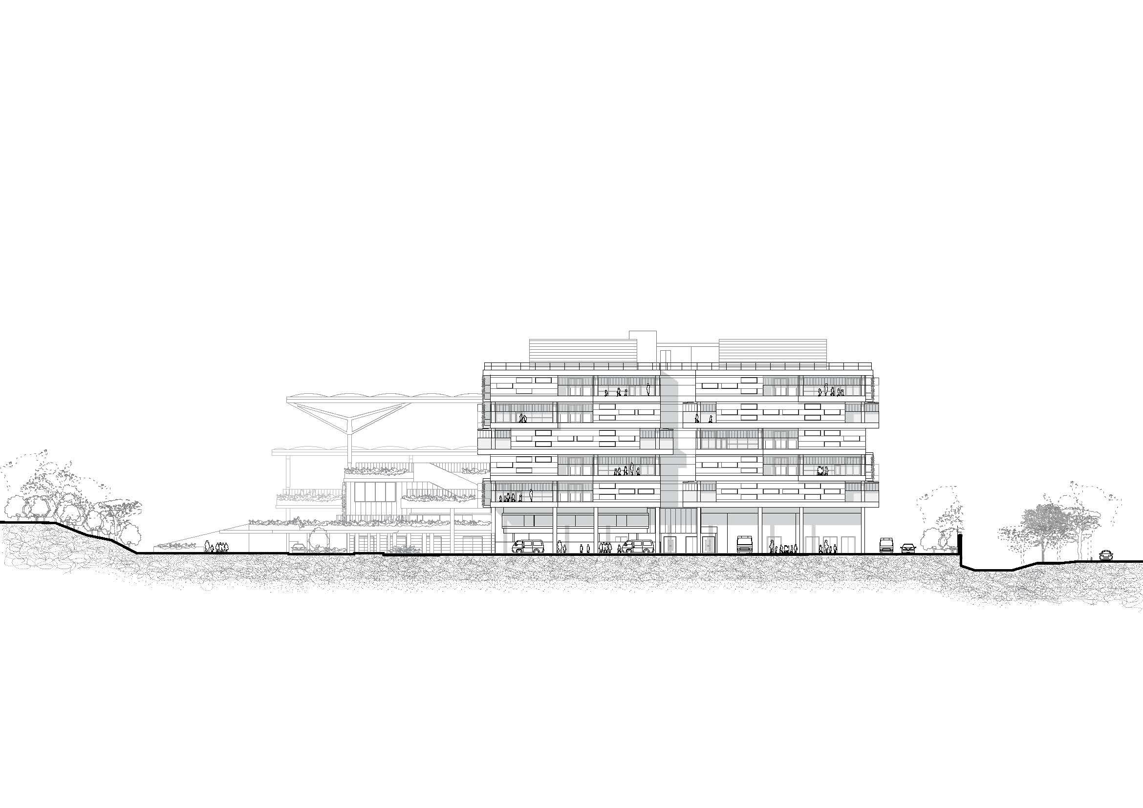Elevation - North Bogle Architects}