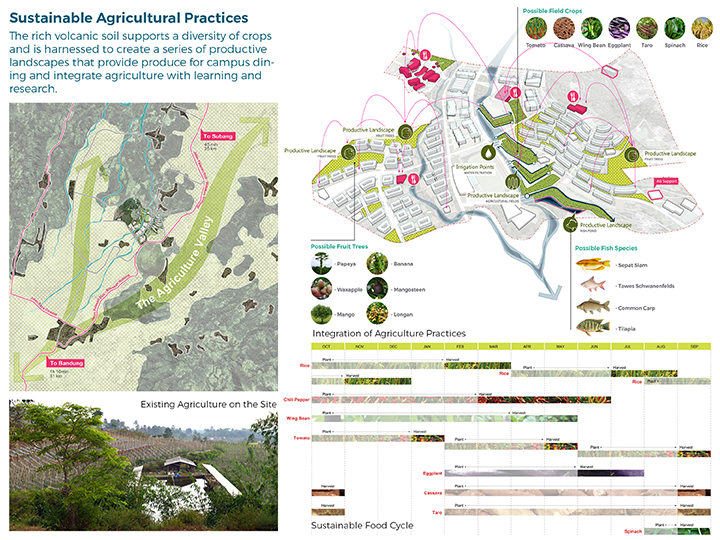 Sustainable Agricultural Strategy