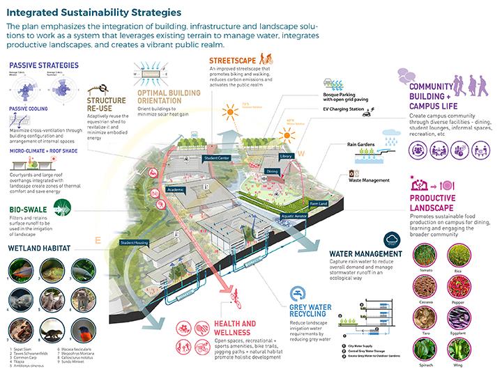 Sustainable Design Strategies }