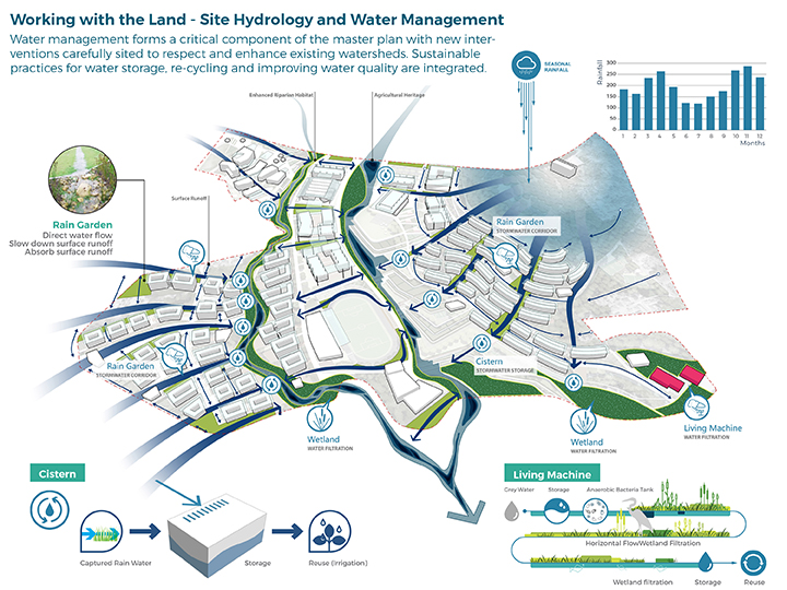 Site Hydrology and Water Management