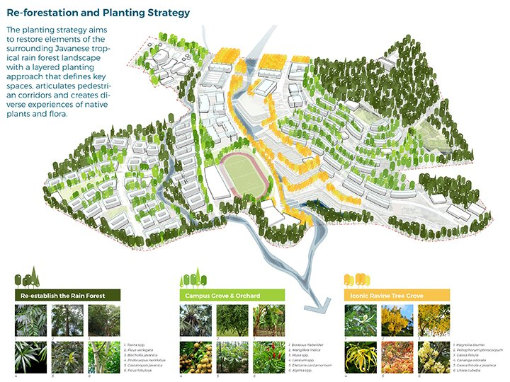 Re-Forestation and Planting Strategy