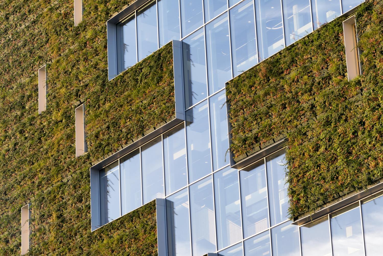 Over a 100 different plant species cover de façade of the City Hall