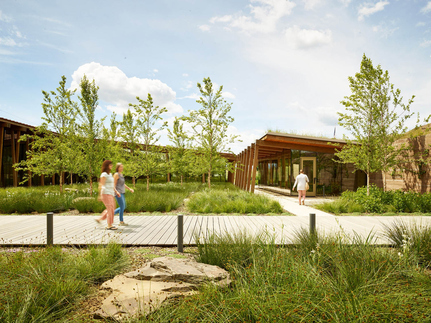 The building and the landscape play off of each other, creating an oasis both inside the work space and out. Kevin Scott