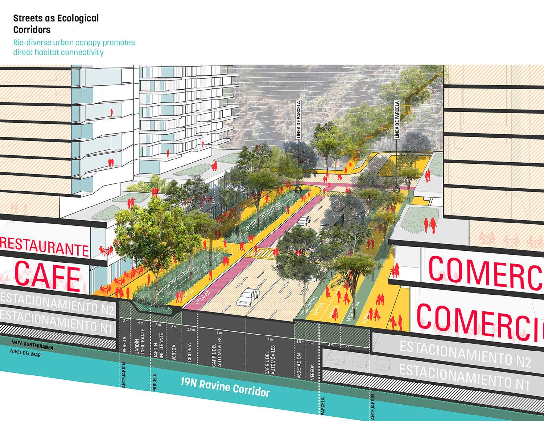 Streets as ecological corridors }