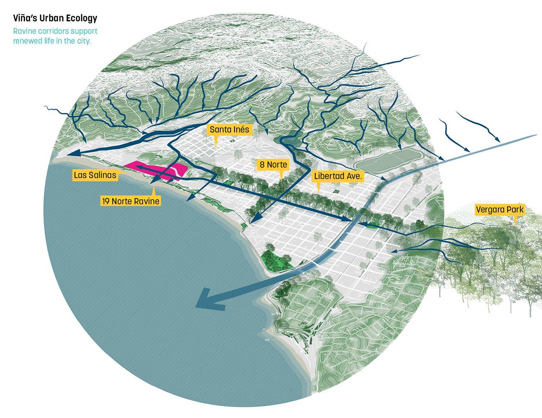 Vina's urban ecology, ravine corridors support renewed life in the city