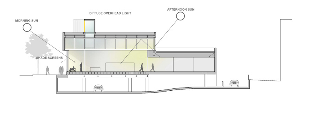 Section-Daylighting }