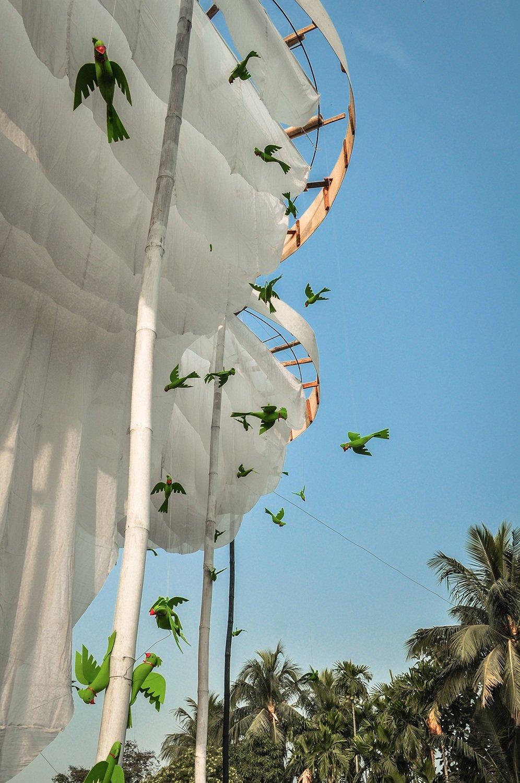 Canopy Edge Detail Sayantan Chakraborty