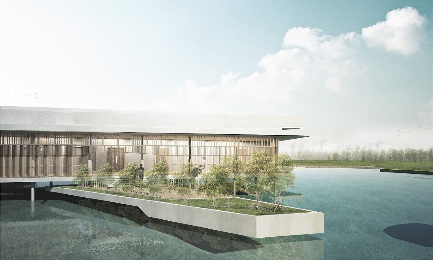 The sunken mangrove terrace for users to have upclose experience Vaslab