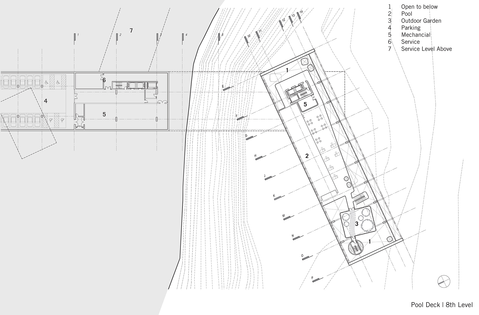 Plan - Pool Deck Level }