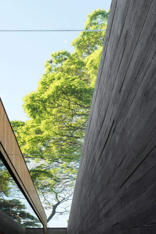 Sky light Fernando Guerra| FG + SG Fotografia de Arquitectura, courtesy Studio MK27