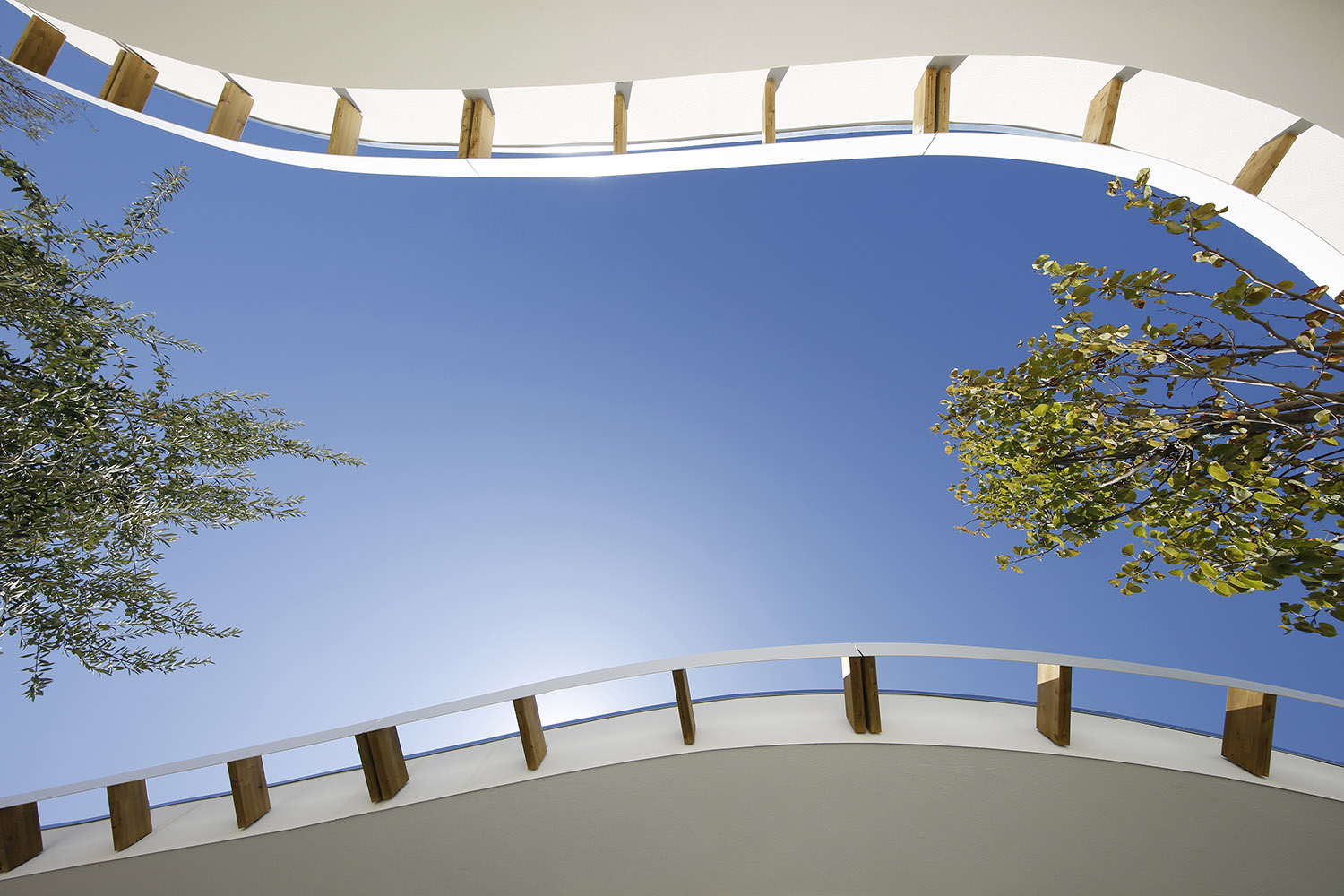 "The ""ceiling"" of the outdoor central classroom photo by Alessandro Peralta"
