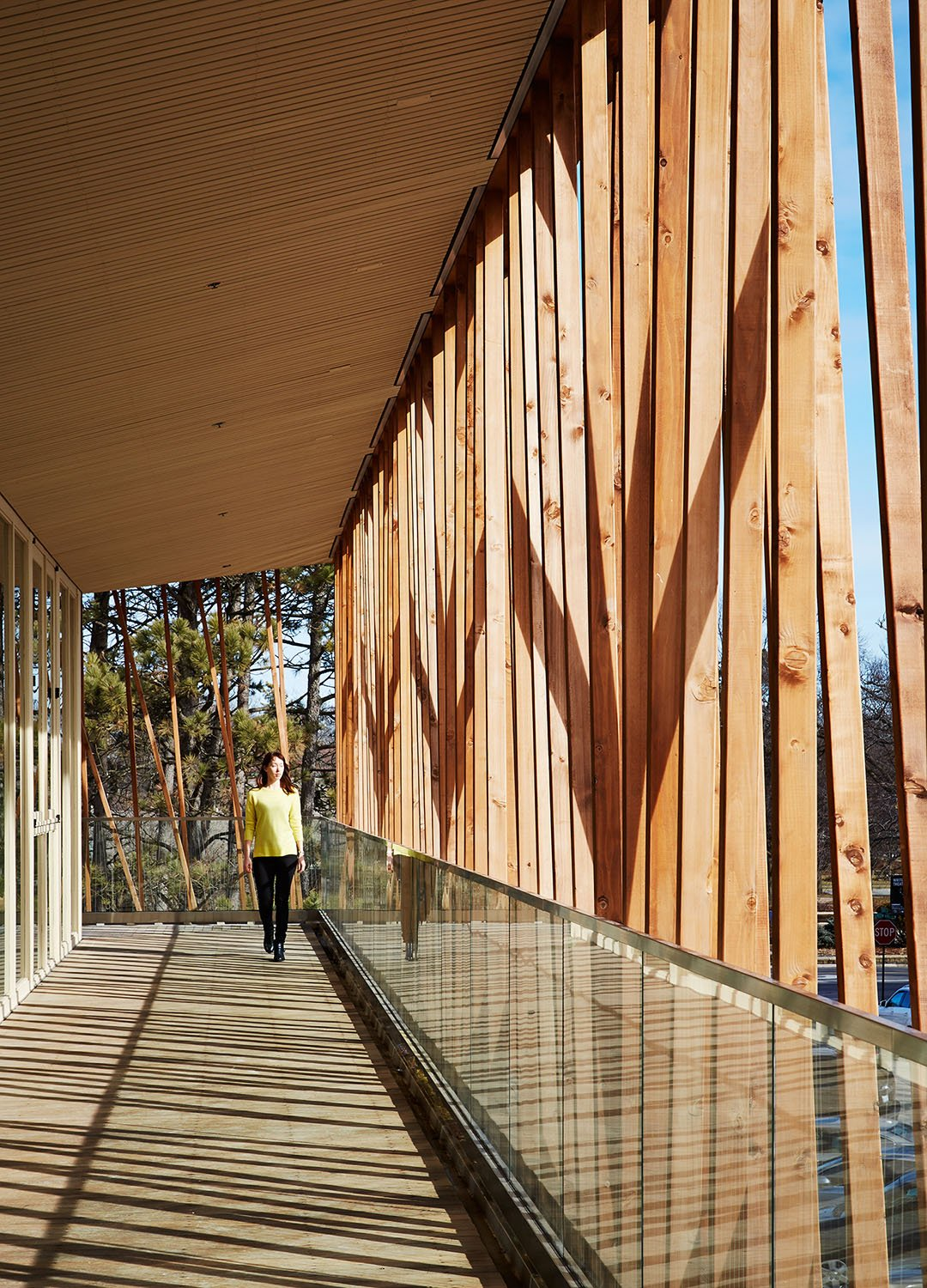 Hung from timber roof trusses, the Canopy Walk on the second floor envelops the lobby, providing a welcoming space for gathering before and after the show and during intermission.