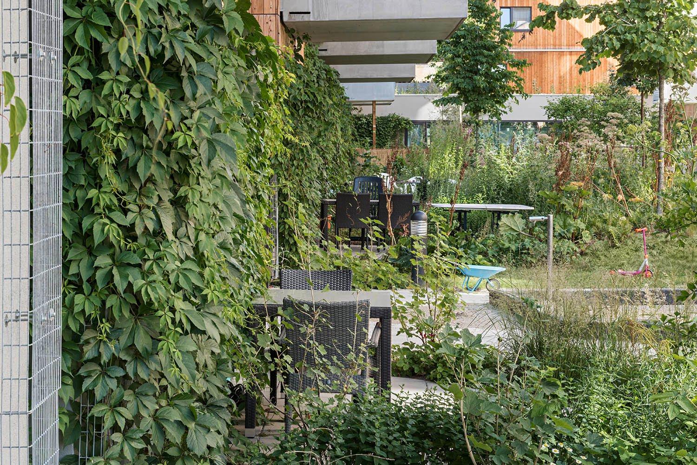 Wood Housing Seestadt Aspern, private terraces © hertha hurnaus | berger+parkkinen architekten | querkraft architekten