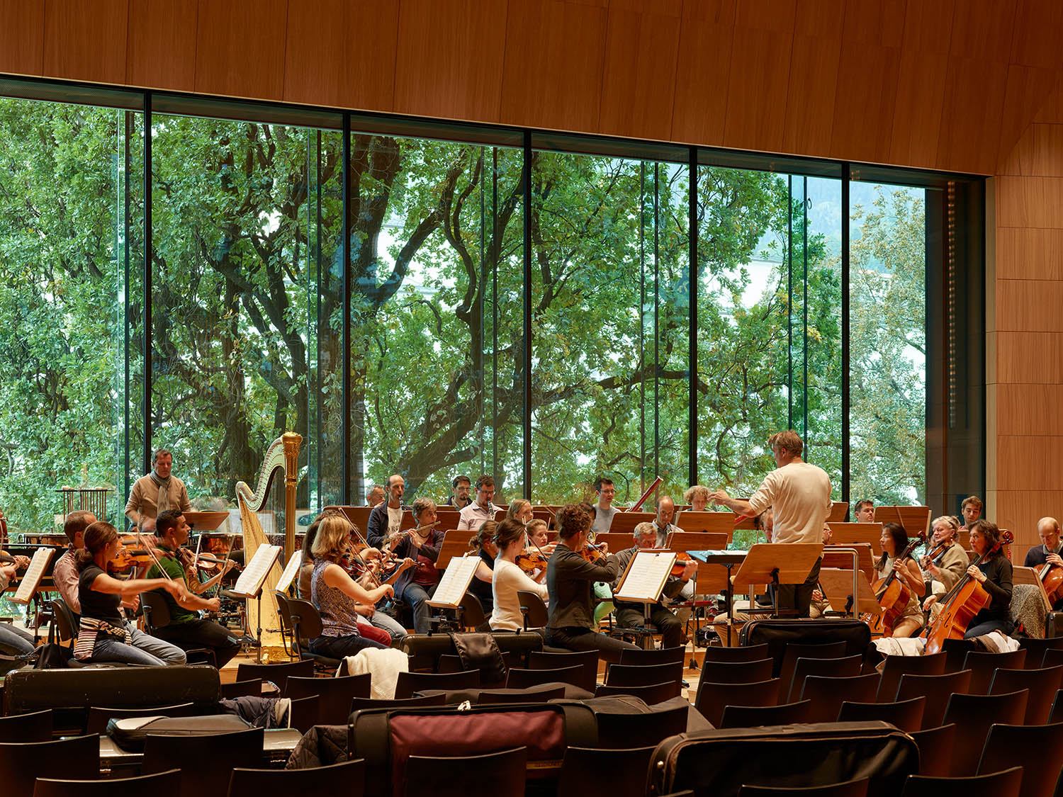 Haus der Musik, View from the Great Hall to the entry plaza  with protected age-old trees Roland Halbe