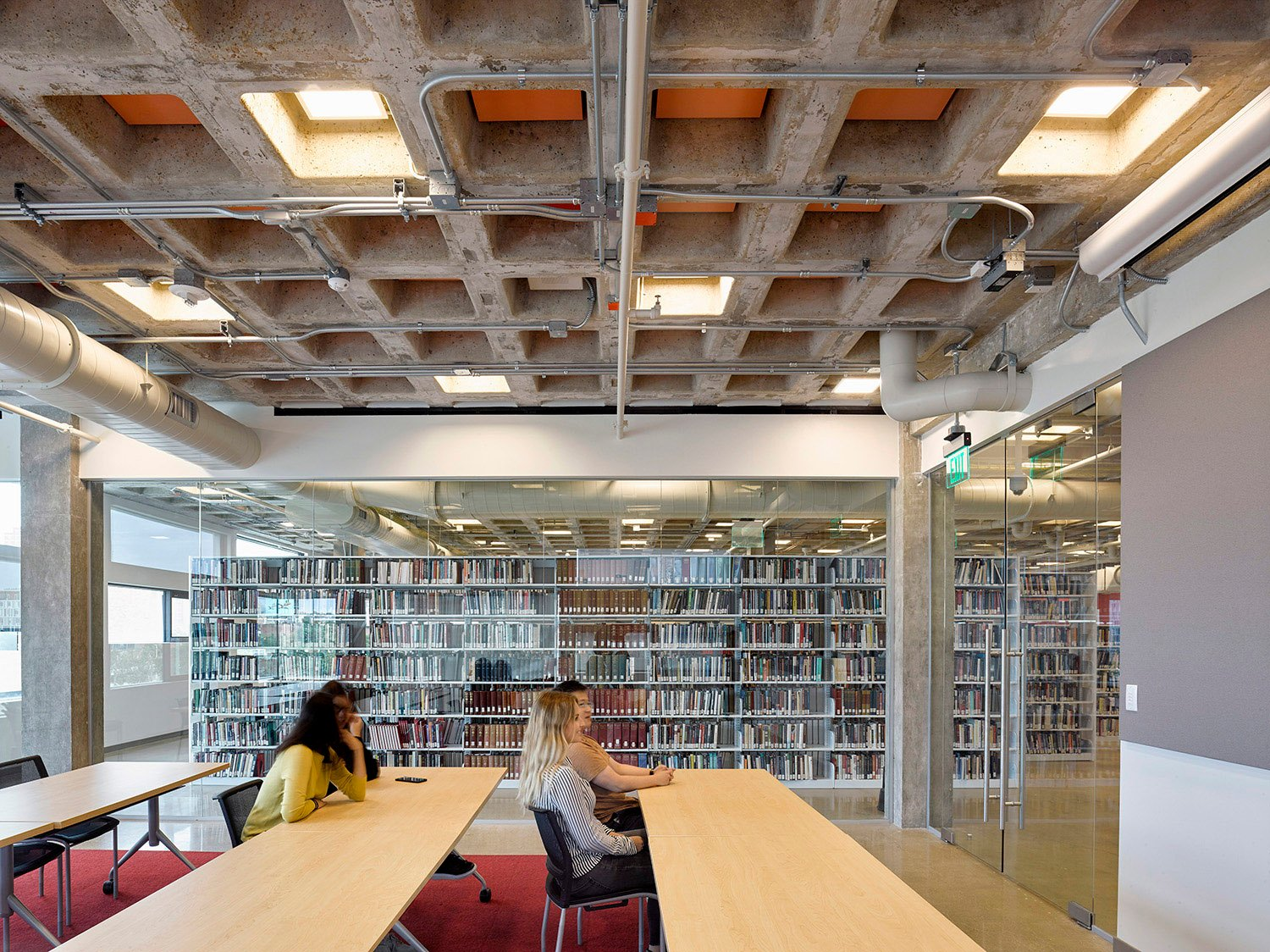 Lecture room with bookshelves David Matthiessen