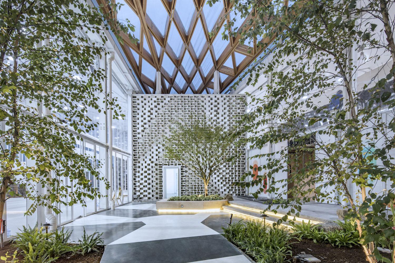 shared garden in between buildings Fangfang Tian