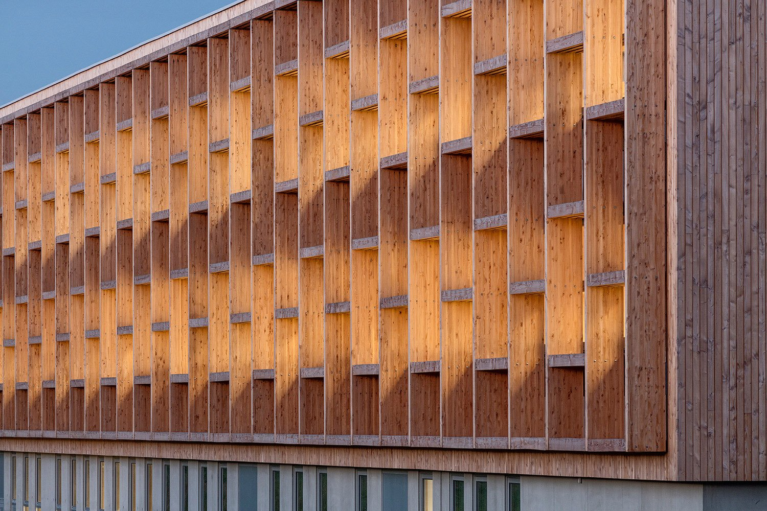 College Lamballe - detail of the wooden structure of the facade Luc Boegly