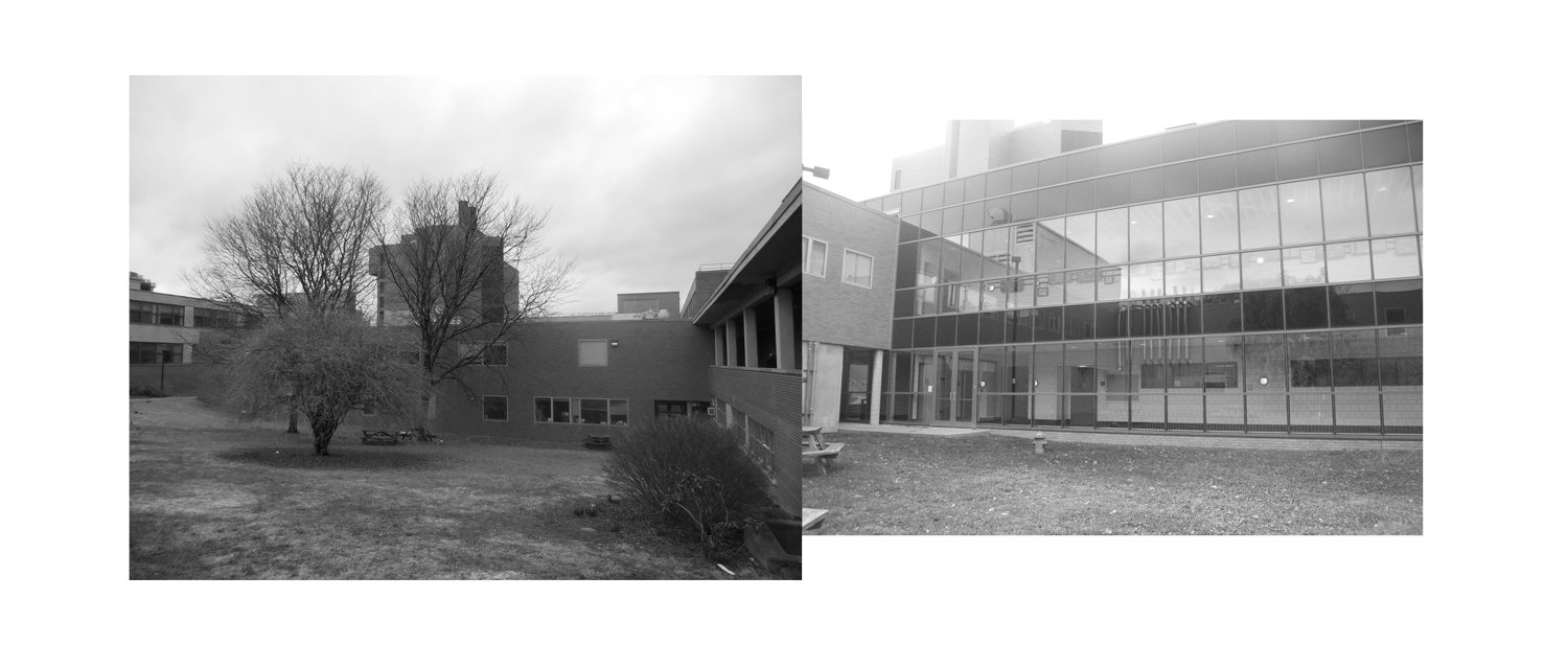 COURTYARD SITE CONDITIONS COLLAGE WEISS/MANFREDI}