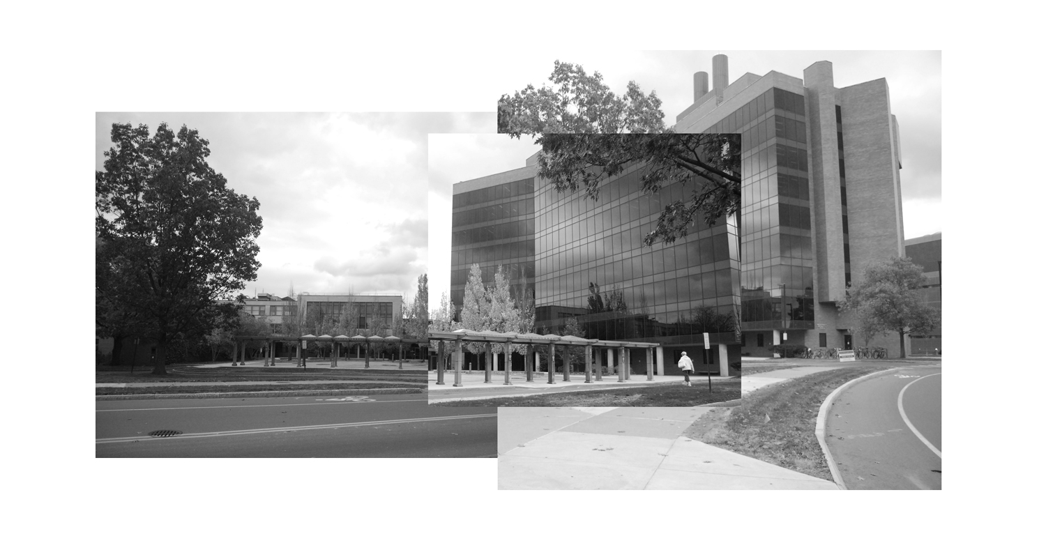 ENTRY PLAZA SITE CONDITIONS COLLAGE WEISS/MANFREDI}