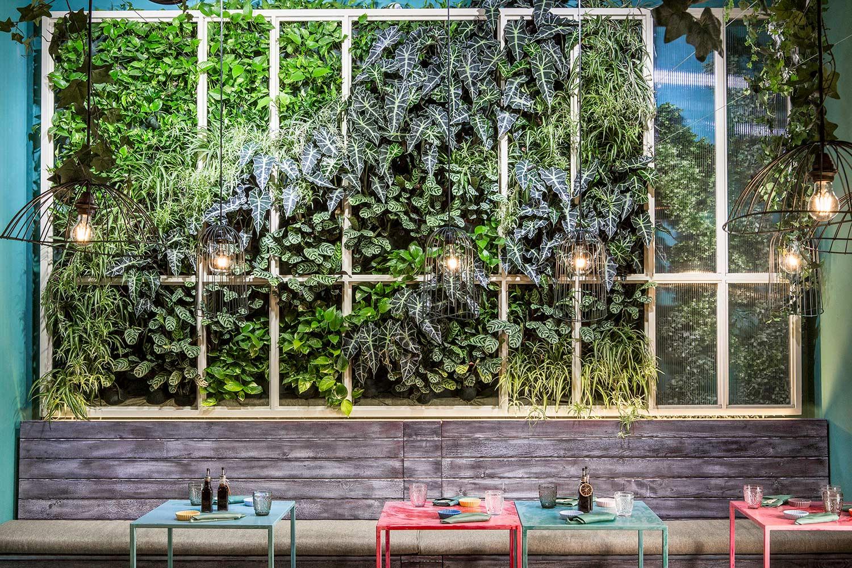 vista frontale della parete verticale di Mahalo RM\Architecture}