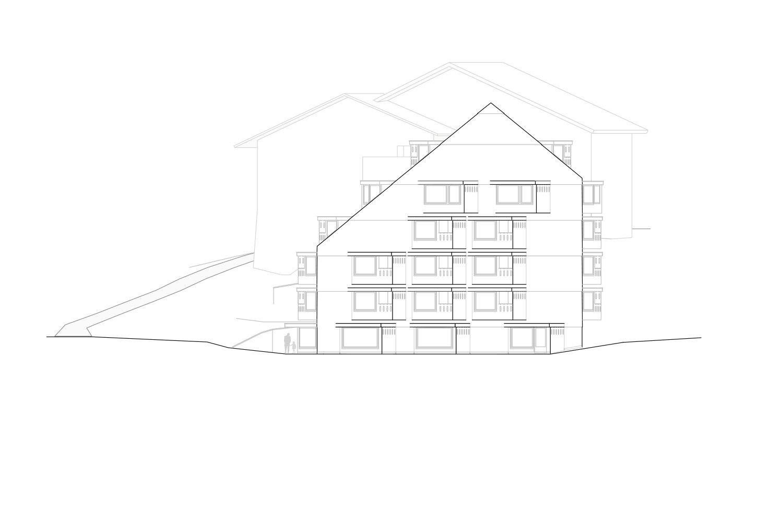 East Facade Pedevilla Architects}