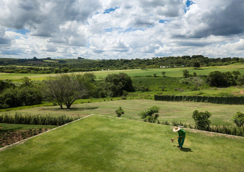 The green roof mimics the surrounding Fernando Guerra