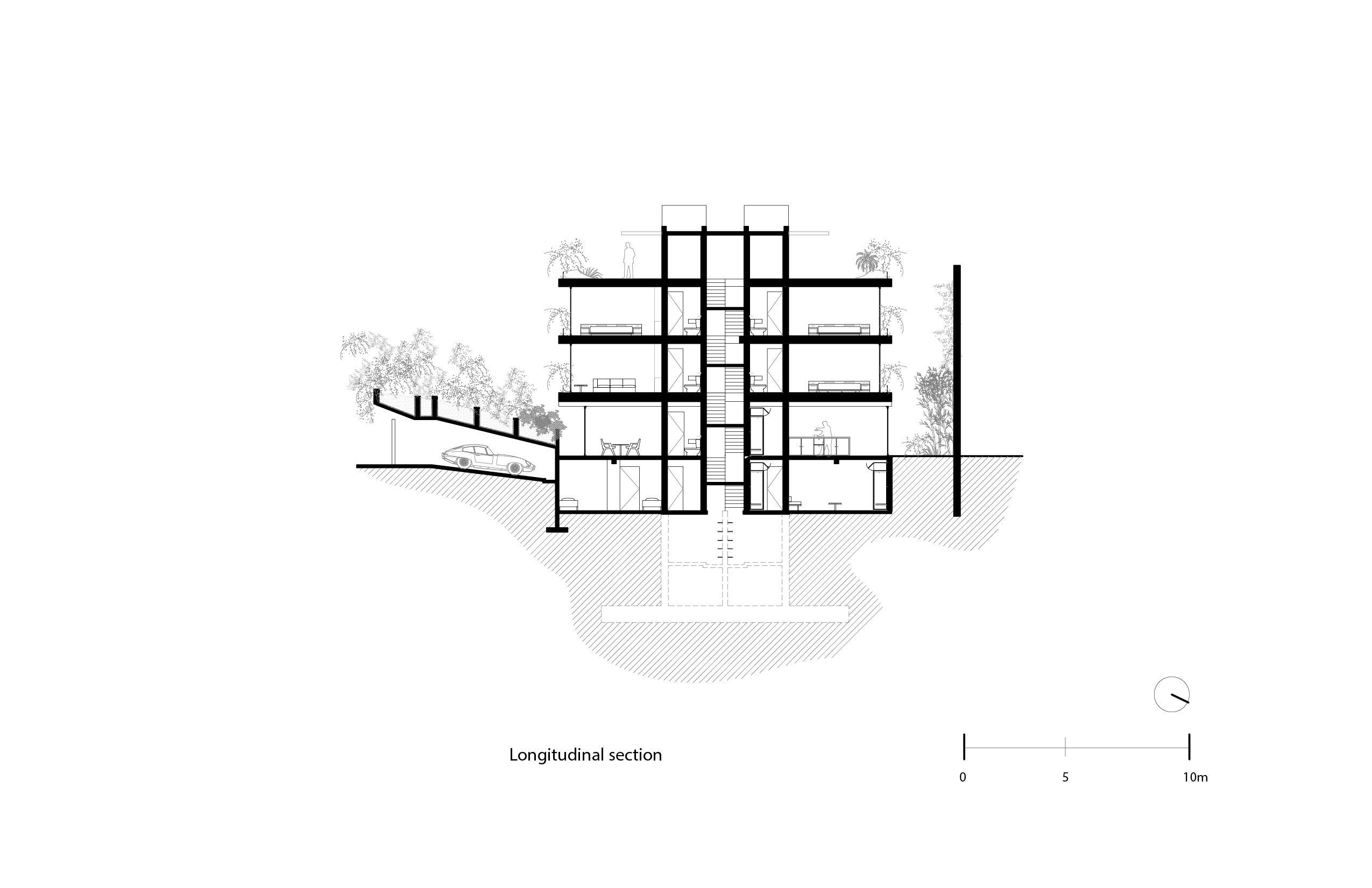Cross section Vertebral}
