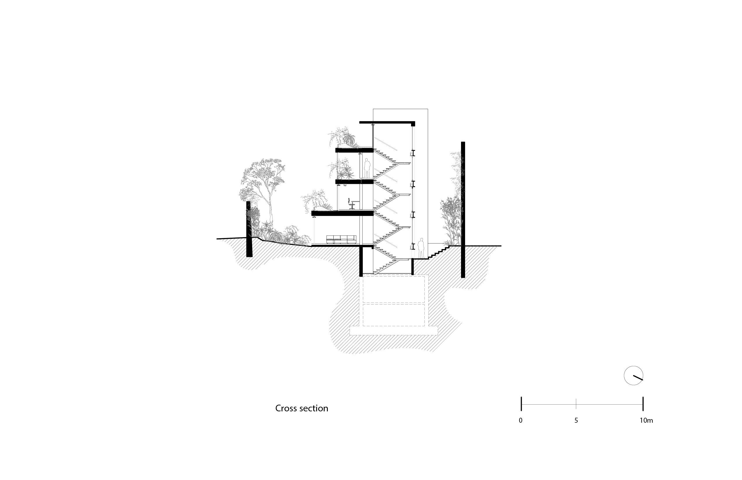Longitudinal section Vertebral}