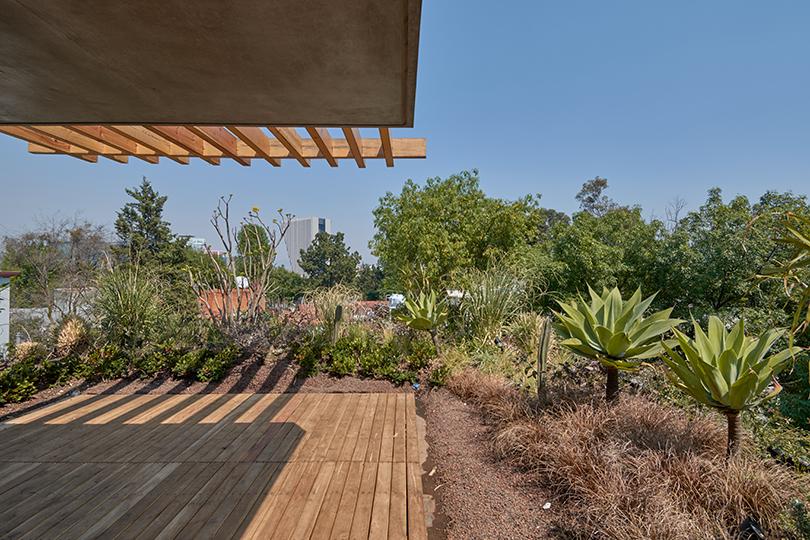 Roofgarden Ricardo de la Concha
