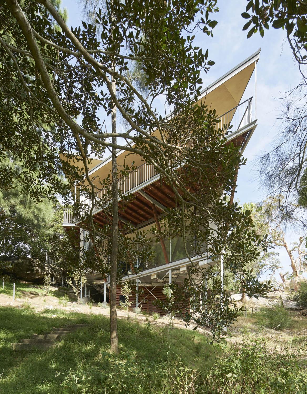 Treehouse Michael Nicholson