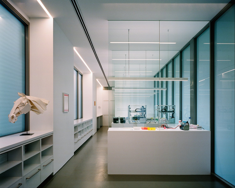 Equine Genetics laboratory on lower level Rory Gardiner
