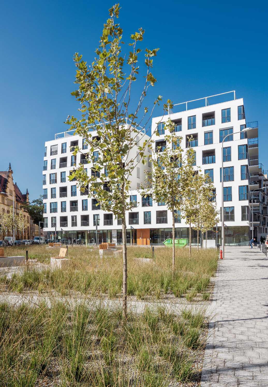 building + public square Maciej Lulko