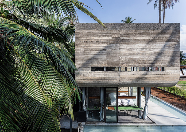 South view : Solid Concrete Wall and Coconut Leaf / Texture Anotherspacestudio|Piamphon Chanpiam