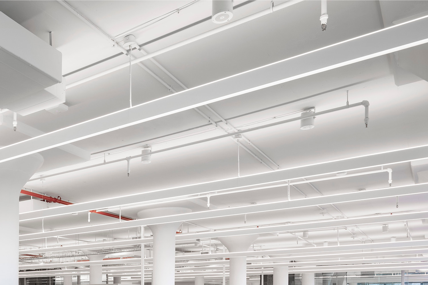 Slim, continuous light fixtures form a single field over workstations Michael Moran
